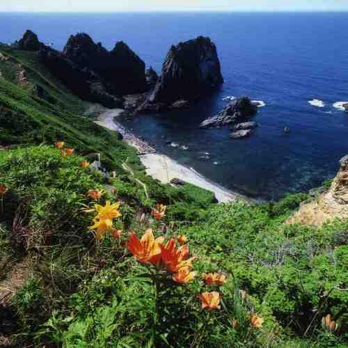 「島武意海岸」夏の海岸