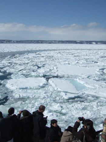 見渡す限りの爽快な流氷原