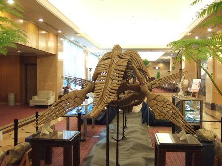 全長 11mの巨大なクビナガリュウ(モレノサウルス)の全身骨格(レプリカ)