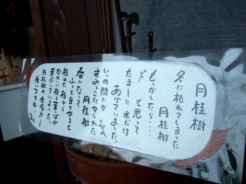 【海の別邸 ふる川】スタッフからのメッセージ