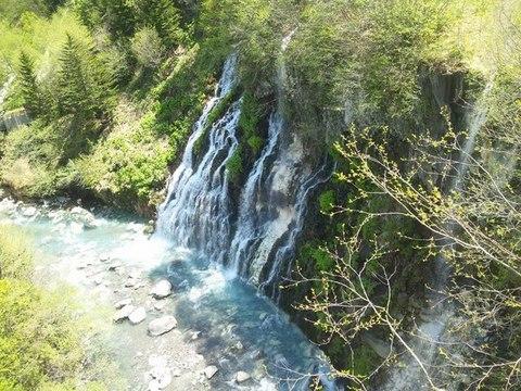 【森の旅亭びえい】グリーンシーズンの絶景「白ひげの滝」