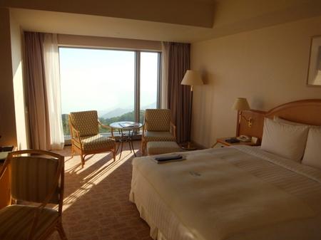 【ウィンザーホテル洞爺】海側客室