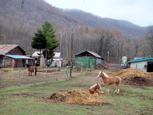 マウレ山荘周辺