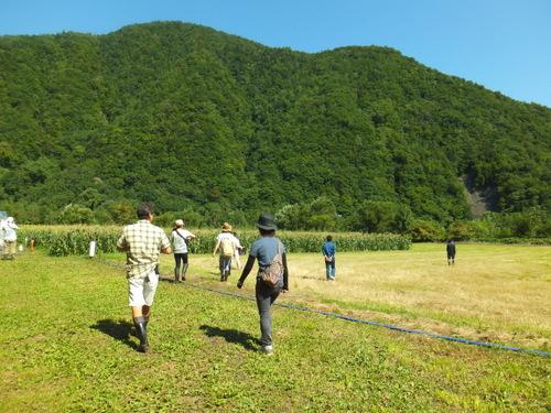 とうきび畑が広がる鹿島農場