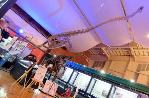 「エコミュージアムセンター」巨大なクビナガリュウのレプリカ