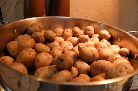 お鍋一杯のジャガイモ。使用品種は甘みの強いインカのめざめ