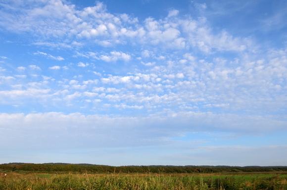 秋の空模様のサロベツ湿原