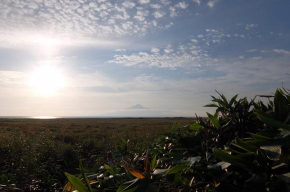 サロベツ湿原から望む利尻富士
