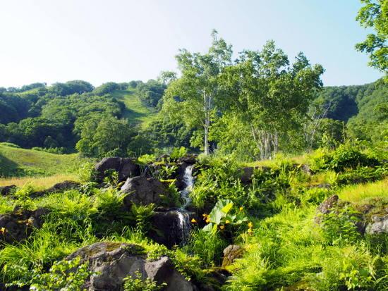 ロビーラウンジからの風景。一面の緑が広がる