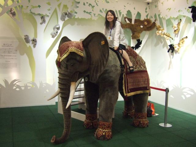 大きな象のぬいぐるみ