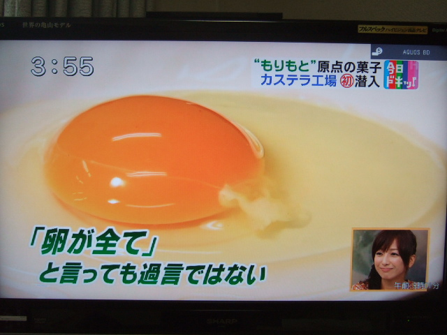 HBC「グッチーの今日ドキッ!」カステラ紹介
