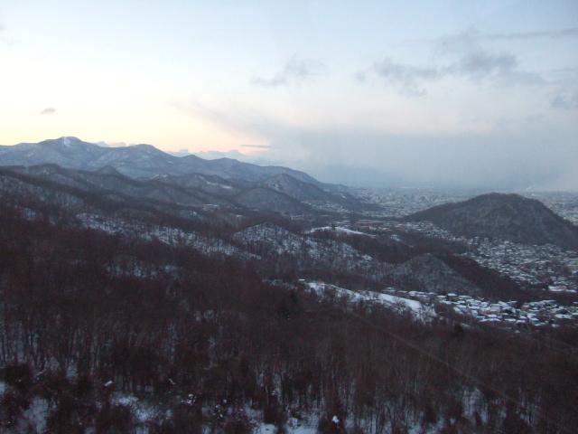 円山方面の原生林