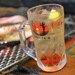 バスで行く北海道の旅 釧路でハシゴ酒