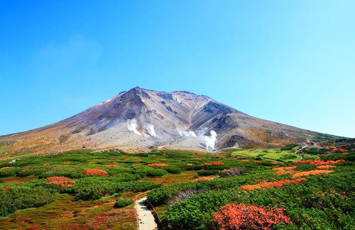 噴煙を上げる山頂付近の山肌と鮮やかな紅葉のコントラストが美しい旭岳