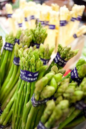 北海道 春の野菜