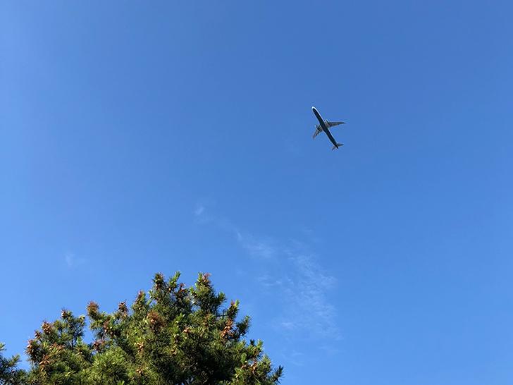 頭上を ごぉぉぉぉぉーーーと、飛行機。湯の川らしいですね。