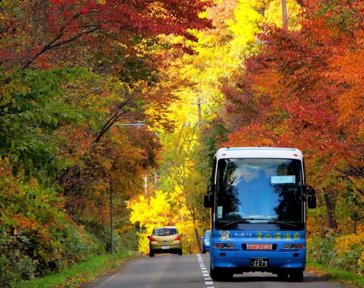 紅葉の渓谷を走る定山渓カッパバス