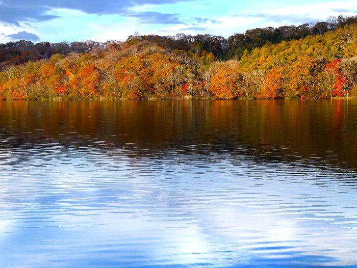 【白老町】クッタラ湖