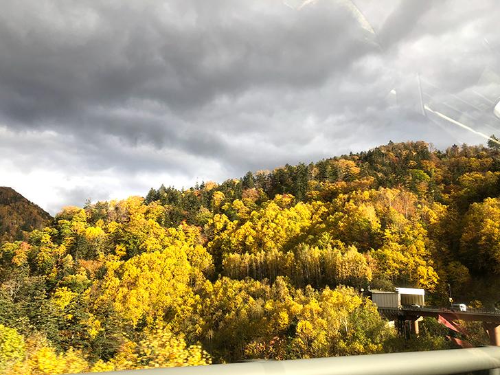 中山峠の美しい紅葉。紅葉狩りの旅にぴったり!