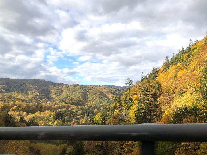 中山峠の美しい紅葉