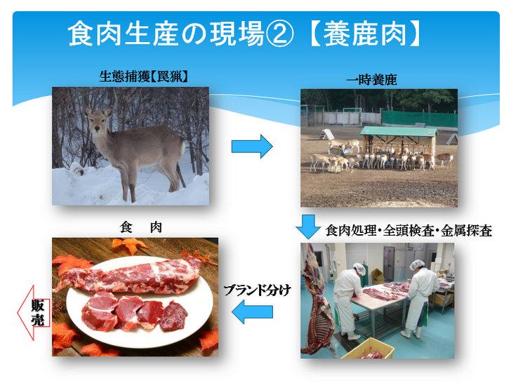 食肉生産の現場2 養鹿肉についてのスライド1