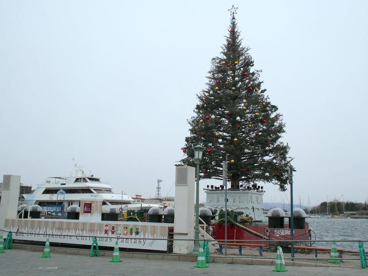 昼のクリスマスツリー