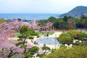 春の函館公園