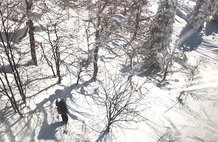 バックカントリーを楽しむスキーヤーも見えます