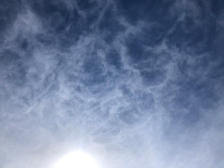 見上げた青空もキレイです