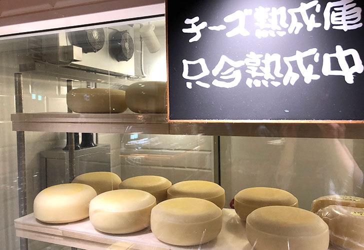 自家製チーズのゴーダチーズを熟成中♪