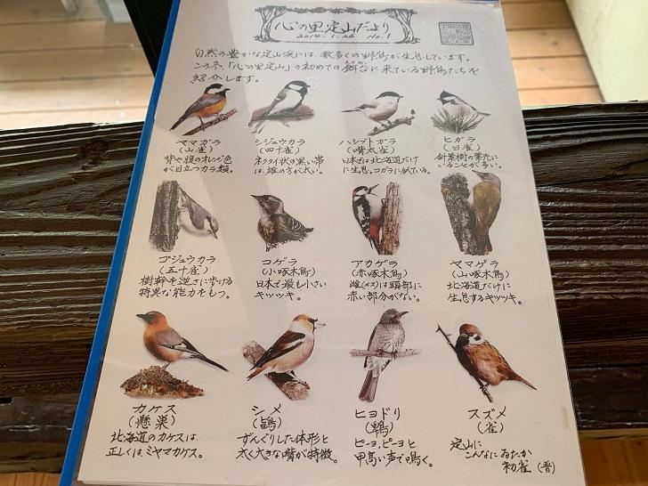 心の里 定山、バードウオッチングで見れる鳥の説明書