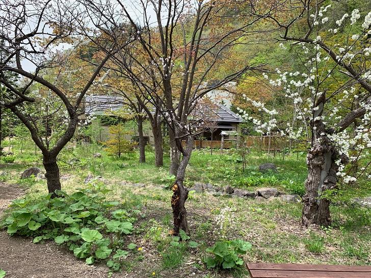 心の里定山、庭の写真