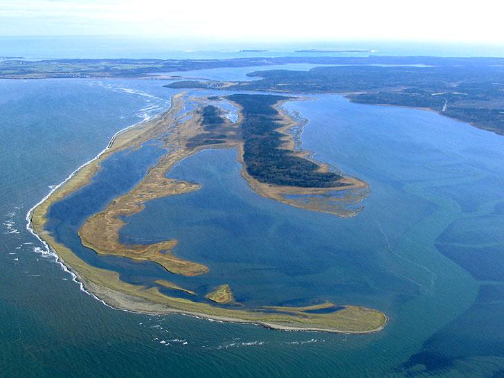 奇跡の島といわれる春国岱