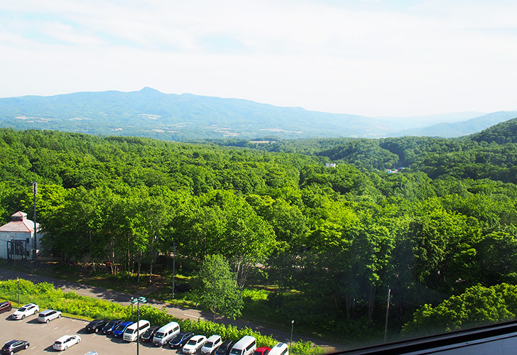 10階からの眺め