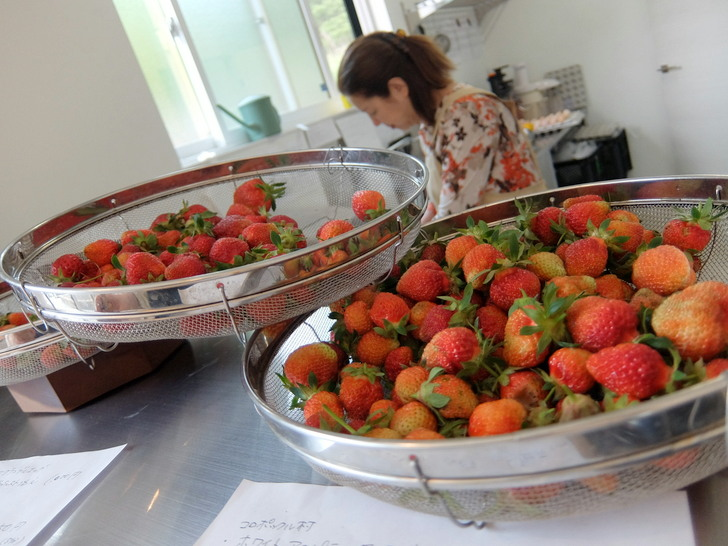 札幌限定のイチゴ「さとほろ」