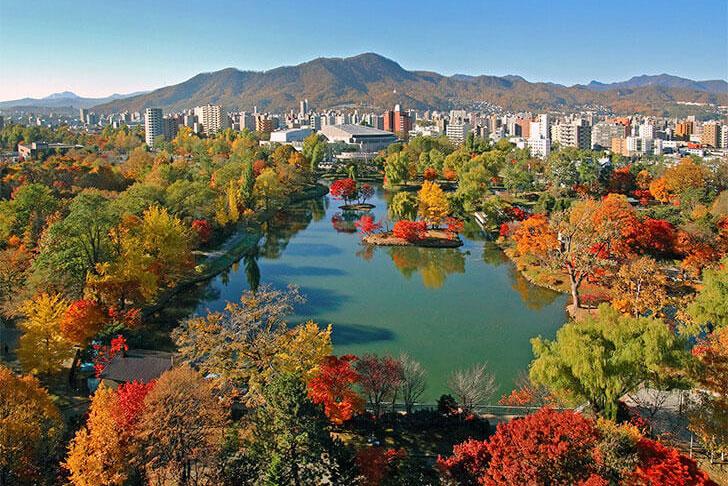 ホテルから見える中島公園