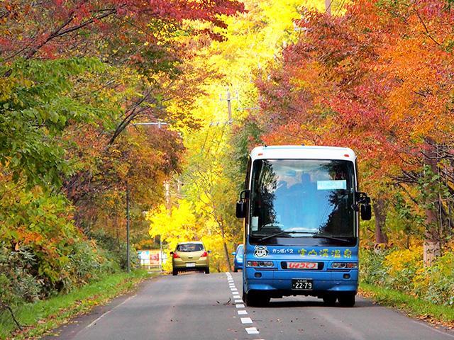 定山渓の紅葉の中を走るかっぱバス