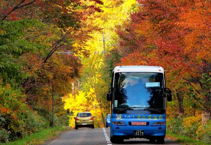 紅葉かっぱバス