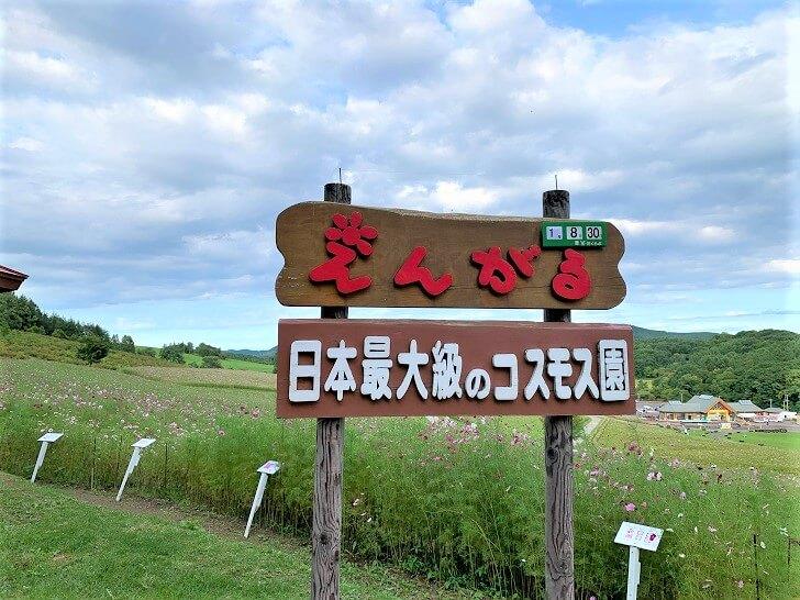 えんがる日本最大級のコスモス園の看板