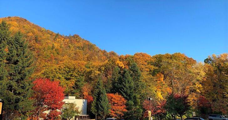 小金湯温泉付近の紅葉の写真
