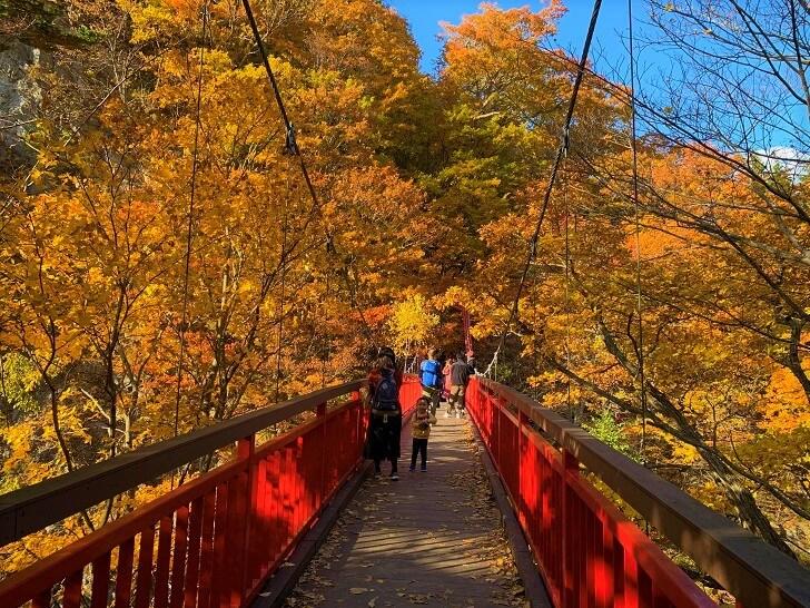 二見吊橋を渡り切ったところからの紅葉の写真