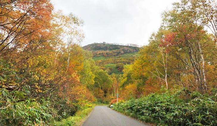 山も道路脇も紅葉が美しい10月のニセコ