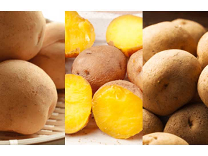 ひだまりファームのジャガイモ3種おまかせセット