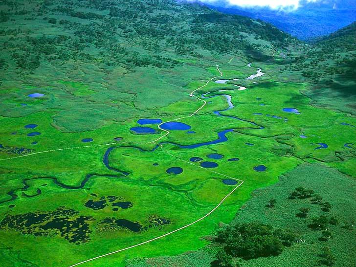 雨竜沼湿原空撮