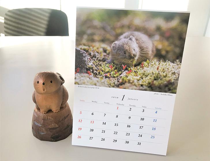 ナキウサギ卓上カレンダー
