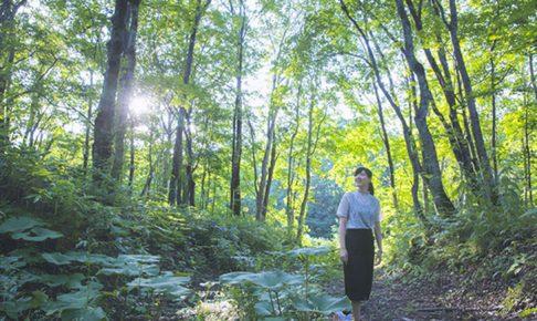 北湯沢の森