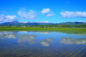 新十津川の田園風景