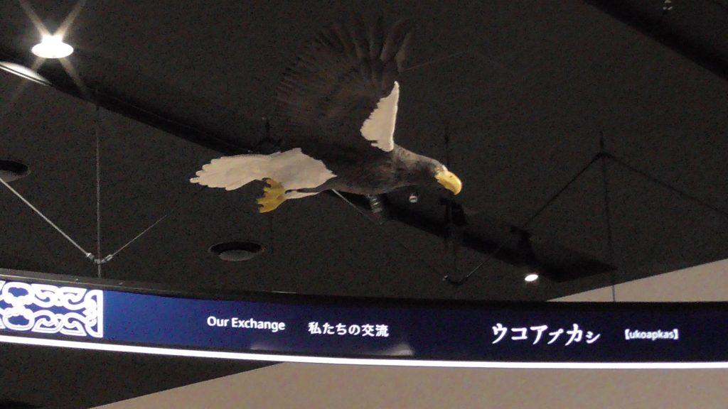 基本展示室の鳥模型