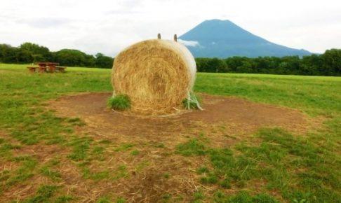 ニセコの羊蹄山