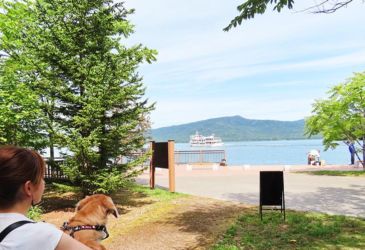 阿寒湖と犬